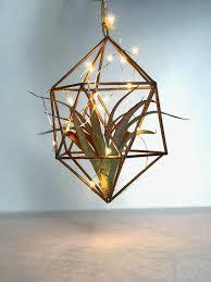 hanging terrarium nightlight u2014 the bloom equation