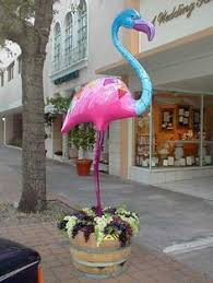 1734 best flamingos images on pinterest pink flamingos