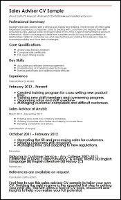 hr advisor cv template salesman resume samples resumess memberpro co