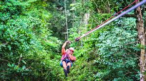 canopy mal pais pacifico canopy tour in costa rica zip