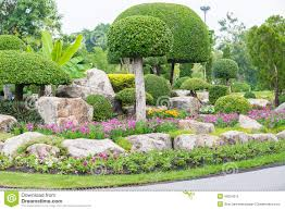 gardening and landscaping with decorative trees stock photo
