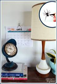 lampshade spider april fools idea reality daydream