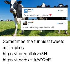 Funny Food Names Meme - peta peta cows are friends not food jordy name one cow you re