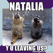 Meme Generator Raccoon - natalia y u leaving us praying raccoon meme generator