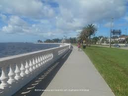 the world u0027s longest sidewalk tampa u0027s bayshore blvd top ten
