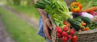 a good weight loss diet is a good longevity diet drfuhrman com