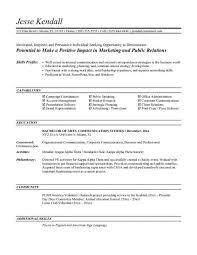 resume objective statement exles entry level sales and marketing entry level resume objective latter day snapshot sales sle