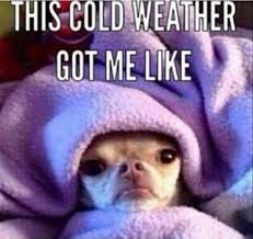 Funny Cold Meme - 25 cute cold weather quotes quoteshumor com quoteshumor com