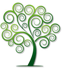 logo of the site the spiral tree illustrations