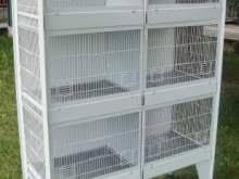 produttori gabbie per uccelli batteria gabbia accessori vari per animali kijiji annunci di ebay
