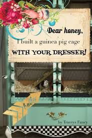 Guinea Pig Cages Cheap 24 Best Diy Guinea Pig Cages Images On Pinterest Guinea Pigs