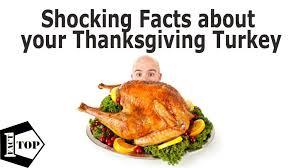 thanksgiving uncategorized thanksgiving facts pumpkin health
