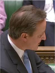 hair styles for women with center bald spots david cameron s hair loss worsens with visible bald patch