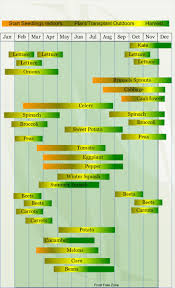 Garden Layout by Square Foot Garden Layout Plans How To Lay Out A Raised Bed