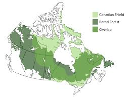 Map Canada Provinces by Canadian Shield The Canadian Encyclopedia