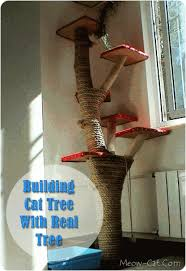 customer trees cat tree plans how to build cat furniture do