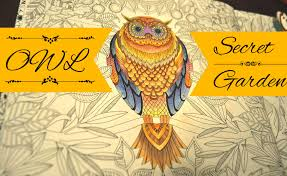 Secret Garden Coloring Book Owl Jardim Secreto Youtube Owl Coloring Ideas