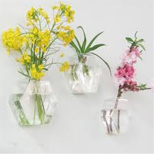 Hanging Glass Wall Vase Hexagon Shape Wall Hanging Glass Flower Plant Vase Terrarium
