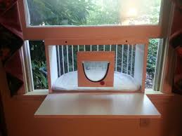 Outdoor Cat Condo Plans by Cat Window Box Cat Solarium Cat Solarium Cat Window Box
