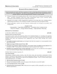 Resume Objective Account Manager Resume Objective For Account Manager Position Resume Office