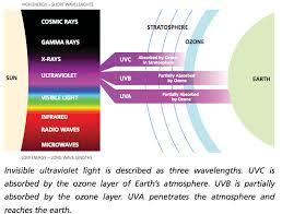 What Is Uv Light Surfers U0026 Sunscreen Vs Uv Rays U0026 Skin Cancer