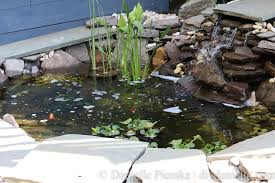 Pond In Backyard by Creating A Pond And Patio Setup For The Backyard Garden To Enjoy