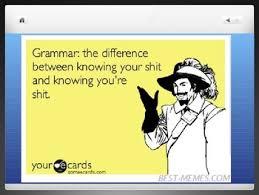 Grammar Meme - grammar meme powerpoint presentation by angela pilson tpt