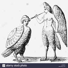 harpies greek mythical creatures half woman half bird wood