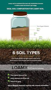 Garden Soil Types - why is my lawn dying how to test and amend your soil