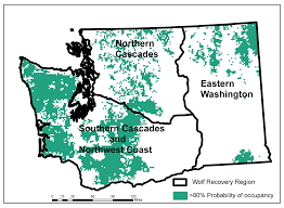 Wsu Map Wsu Study Informs State Wolf Plan Could Become Recovery Model