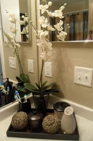 Bathrooms Decoration Ideas Bamboo Plant Instead And Jars For Guests On The Bathroom Counter