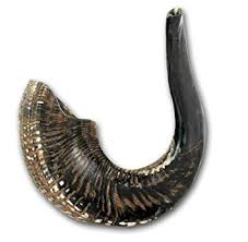 shofar rams horn shofar ram s horn shofar medium size 39 42cm