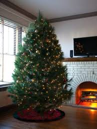 Christmas Tree Buy Online - fresh cut christmas trees for sale online free shipping over 79 99