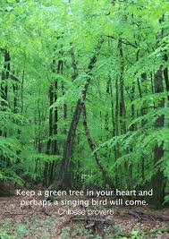 keep a green tree in your and perhaps a singing bird will