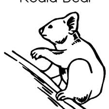 koala bear picture coloring color luna