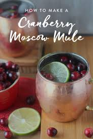 151 best holiday drink recipes images on pinterest