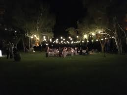 Outdoor Wedding Lights String by Wedding Pictures By Islay Events Islay Events