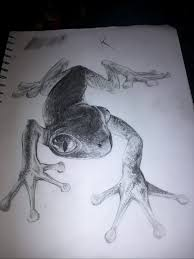 eyed tree frog by seudonym on deviantart