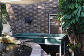 fish mccarthy park