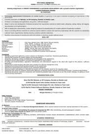 Sample Form Of Resume by Examples Of Resumes 85 Excellent Example A Resume For Job Sample