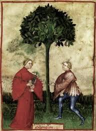 92 best the medieval garden images on pinterest