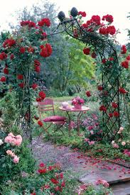 climbing rose supports make fabulous features for smaller gardens