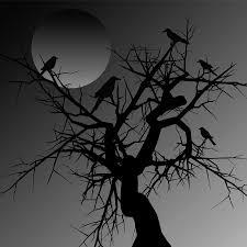halloween black birds nightfall beware of the birds spooky little like you