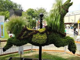 Horse Topiary Revisiting The Pne Colleen Anderson