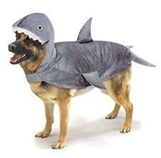 casual canine casual canine shark costume for dogs