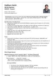 Qa Qc Engineer Resume Sample by Design Automation Engineer Sample Resume 18 Sr Qa Software Test