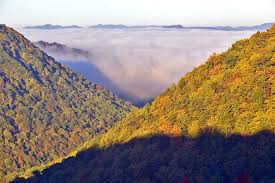 most scenic roads in usa west virginia s most scenic roads and byways