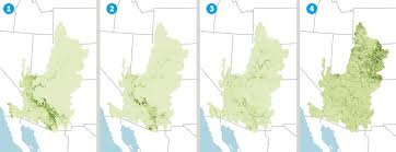 Colorado River Basin Map in the arid west protecting oases vital to birds requires