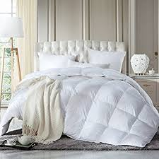 Down Comforter Full Size Amazon Com Luxurious Full Queen Size Siberian Goose Down