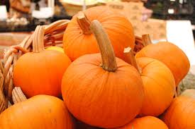 harvest thanksgiving service cuesa throws harvest festival to celebrate jack london square